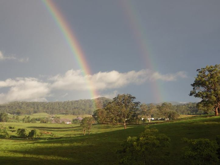 Rainbow by Kerry Williams