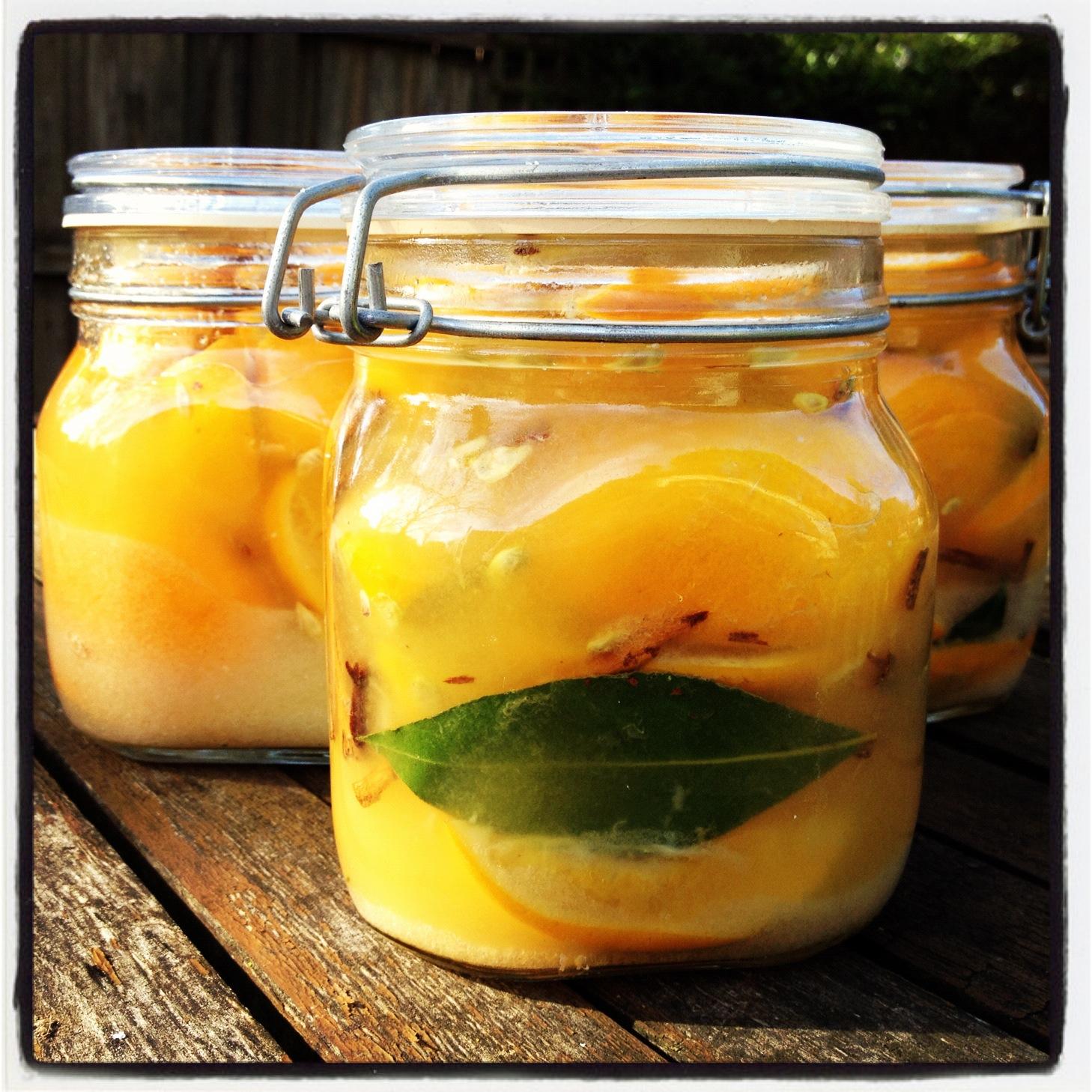 preserved lemons | The Practical Mystic