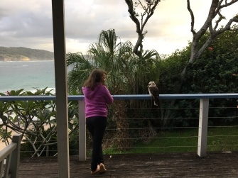 Alani communing with a friendly kookaburra on our last morning